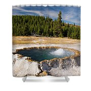 Punchbowl Spring Shower Curtain