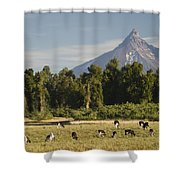 Puntiagudo Volcano In The Background Shower Curtain