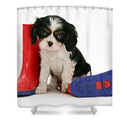 Puppies With A Childs Rain Boots Shower Curtain