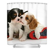Puppies With Rain Boots Shower Curtain by Jane Burton