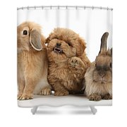 Puppy And Rabbits Shower Curtain