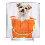 Puppy In Bucket Shower Curtain