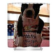 Puppy Kit Shower Curtain