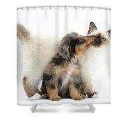 Puppy Licking Kitten Shower Curtain
