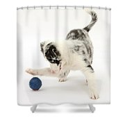 Puppy Playing With A Ball Shower Curtain