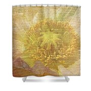 Pure Delicate Center Shower Curtain