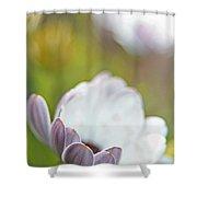 Pure Petals Shower Curtain