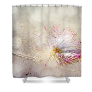 Purity Shower Curtain by Jenny Rainbow