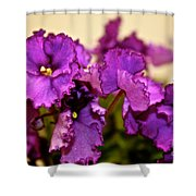 Purple And More Purple Shower Curtain
