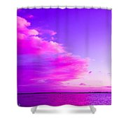 Purple And Pink Shower Curtain