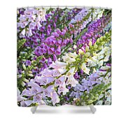 Purple And White Foxglove Square Shower Curtain