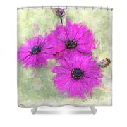 Purple Daisy Trio Watercolor Photoart Shower Curtain