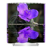 Purple Elegance - Spider Wort Shower Curtain