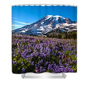 Purple Fields Forever Shower Curtain