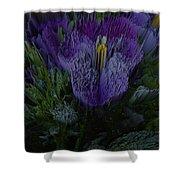 Purple Flower Springs Shower Curtain