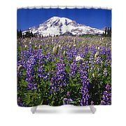 Purple Flowers Blooming Beneath Mount Shower Curtain