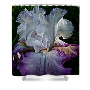 Purple Hues Shower Curtain