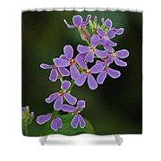 Purple Joy Shower Curtain