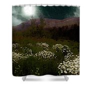 Purple Mountain Meadow Shower Curtain