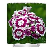 Purple On White Flowers Shower Curtain