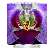 Purple Orchid Macro Shower Curtain