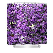 Purple Screen Square Shower Curtain