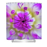 Purple Splendor Shower Curtain