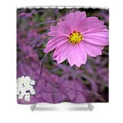 Purple Statement Shower Curtain