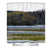 Puurijarvi Shower Curtain
