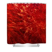 Quadra-18-red Shower Curtain