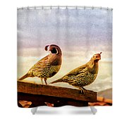 Quail And His Lady Shower Curtain