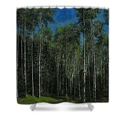 Quaking Aspens Shower Curtain