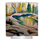 Quebec Winter Landscape Shower Curtain