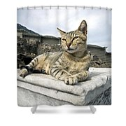 Queen Of Ephesus Shower Curtain