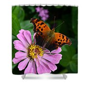 Question Mark Butterfly And Zinnia Flower Shower Curtain