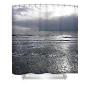 Quicksilver Shower Curtain