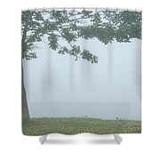 Quiet Fog Rolling In Shower Curtain