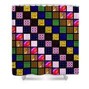 Quilt 1 Shower Curtain