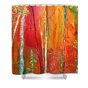 Quinacridone Hollow  Shower Curtain