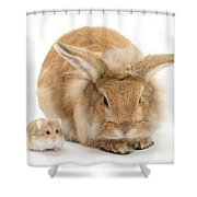 Rabbit And Dwarf Hamster Shower Curtain