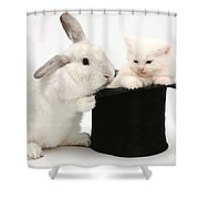 Rabbit And Kitten In Top Hat Shower Curtain