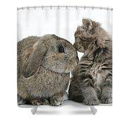 Rabbit And Kitten Shower Curtain