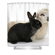 Rabbit And Lamb Shower Curtain