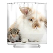 Rabbit And Squirrel Shower Curtain