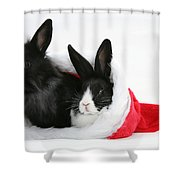 Rabbits In Hat Shower Curtain