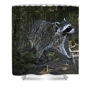 Racoon Emerging From The Woods Shower Curtain
