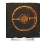 Radiolarian Lm Shower Curtain