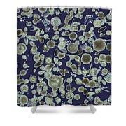 Radiolarian Ooze Lm Shower Curtain