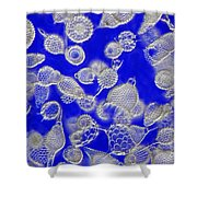 Radiolarian Ooze Shower Curtain
