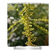 Rag Weed Tendril Shower Curtain